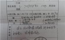 陕西银杏价格表,最新银杏价格查询-2017年2月28日