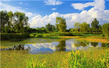 广西:贺州打造森林康养产业集群