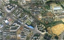 湖口:建古树名木地理信息数据库