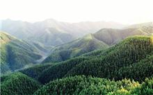 贵阳经济区:今年乡土树种助力将造林300公顷