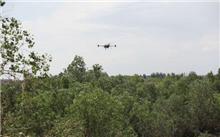 陕西首次应用无人机防治林业有害生物 完成飞防20.9万亩