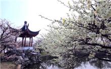 """江苏光福擦亮""""中国苗木之乡""""金字招牌"""