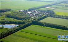 石家庄提出重点造林绿化工程建设工作方案