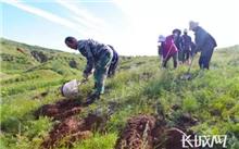 河北:印发《关于创新体制机制推进大规模国土绿化的意