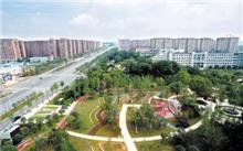 """长沙:聚焦""""城市绿化""""专项工作"""