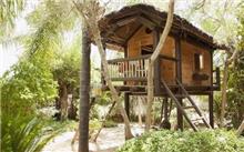 10年内森林树屋等入驻沈阳森林公园