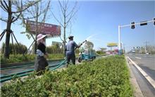 市城市绿化管理中心全力以赴开展抗旱保苗工作