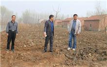 《石家庄市2018年秋冬季农村造林绿化工作实施方案》出