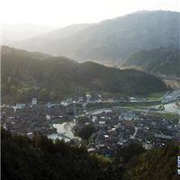 [最美林业故事]侗族老人35载植绿情