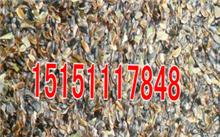 毒死蜱对洋桔梗有危害吗?