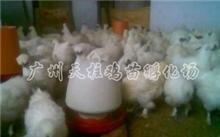 杭州市防腐环保设备厂