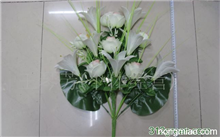 「金鱼草花语」所有花的花语和含义是什么?花的花语是什么?