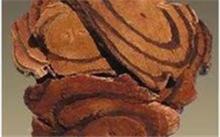 「鸡血藤的功效」鸡血藤有哪些功效与作用?鸡血腾作用