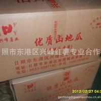 大量供应西农431地瓜,红薯,甘薯,光滑,混批,支付宝
