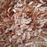 [特供]香椿种子 香椿芽苗菜种子价格 香椿树籽红油香椿种子价格