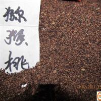 批发供应优质果树种子 猕猴桃树种 猕猴桃种子 当年新采