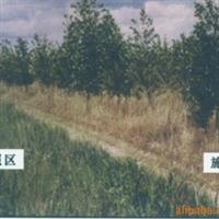 林业专用化学除草剂,惠尔24%乙氧氟草醚乳油