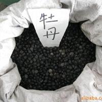 特价出售新采摘优质牡丹花种子 牡丹种子 45元斤