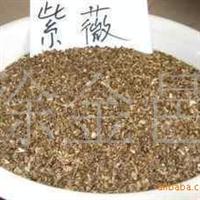 盛园花木种子专区之大量金合欢种子