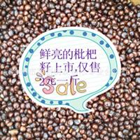 鲜亮的枇杷种子上市,保证质量,仅售9元一斤