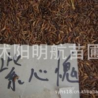紫穗槐种子 优质林木种子 保质保量 批发供应 低价批发
