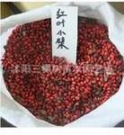 红叶小波种子  批发零售当年红叶小檗种子  一斤只卖220元