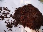 售高山原生态野生猕猴桃种子适应性能强发芽率高生长快