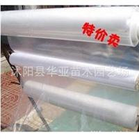 批发供应 塑料薄膜  大棚膜 中膜 加厚塑料薄膜