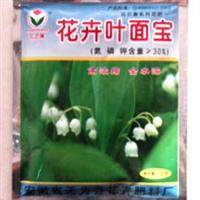 花卉专用肥 花卉叶面宝 铃兰专用 专治叶色发黄
