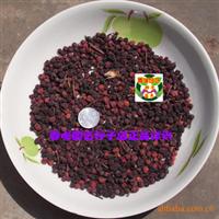 石楠种子 球花石楠种子 石楠千年红种子 扇骨木种子