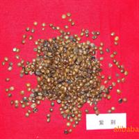 供应种子-紫荆种子-紫荆花树种-花木种苗--山东-济南大成种苗
