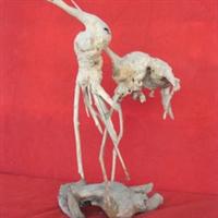 天然根雕-双鹤