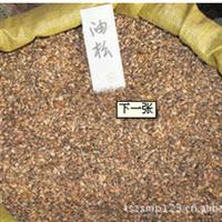 专业供应各种绿化苗种子 纯度高油松种子