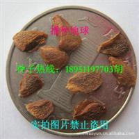 芽苗菜专用特级 香椿种子 香椿芽 红油香椿 播种地球 优质实拍