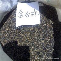 金合欢种子当年新采苗木种子批发持证销售假一赔十质量保证