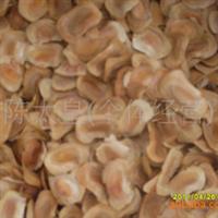 塞楝(非洲楝、非洲桃花心木) 种子 1斤净种 90元