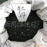 出售牡丹种子 品种齐全 买多优惠