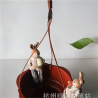 环球出口塑料【塑料吊盆C240】清爽吊兰盆 可爱小花边 送挂钩