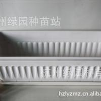 塑料花盆【长条盆ZL510】阳台种菜花盆 马槽盆 含托盘