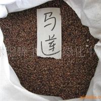 特价出售新采摘马莲花种子 马兰花种子 60元/斤
