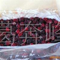 供应全国2012热销美国品种速冻黑莓果