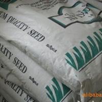 供应进口早熟禾草种,早熟禾草坪,马尼拉草坪,草皮
