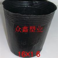 18x16营养钵厂价销售营养钵育苗钵兰花钵