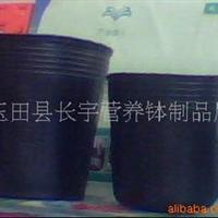 供应花卉,�F化专用育苗杯(图)