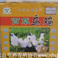 供应乌鸡蛋 礼品盒鸡蛋 40枚|提