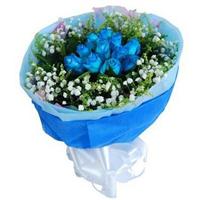 宁德鲜花店 蓝色妖姬 爱情花束 11朵 蓝玫瑰情人节 生日鲜花 N182