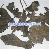 杜仲叶 杜仲 植物原药材 中药材植物原药材 中药材原药材