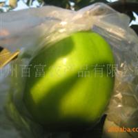 枣 冬枣 青枣 平和特产水果