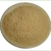 供应菊苣根粉,纯菊苣根粉,浙江绍兴 蒸汽灭菌