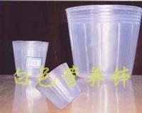 供应营养钵  蝴蝶兰杯  不易变形  耐用